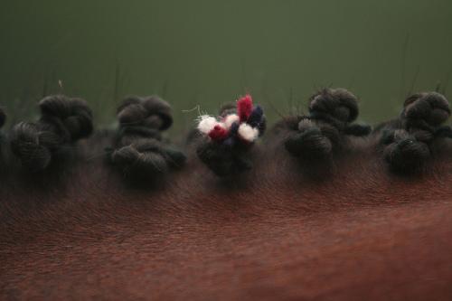 hunter braids