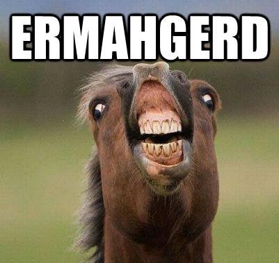 ermahgerd-horse-meme