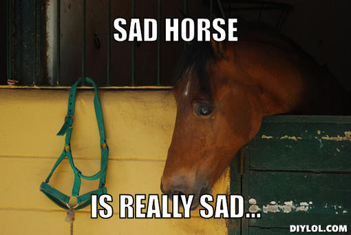 sad-horse-meme-generator-sad-horse-is-really-sad-dafe7b