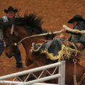 Rodeo Austin Saddle Bronc Riding