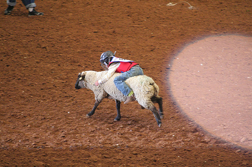 Rodeo Austin Mutton Busting