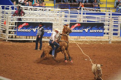 Rodeo Austin Calf Roping
