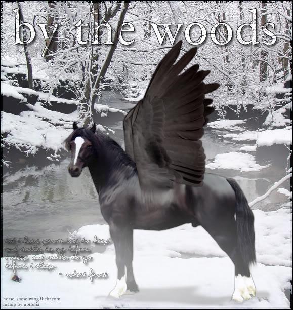 bythewoods