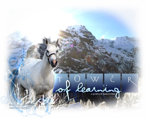 toweroflearning