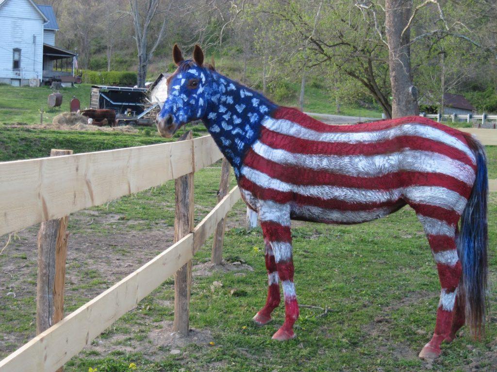 Patriotic Pony by zguy1996 on DeviantArt