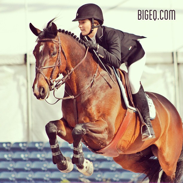 Big Eq - From bigeq.com.  Not a frequent poster, but good eye candy for AA show photos.