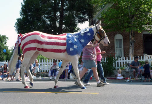 patriotic-2Bhorse1