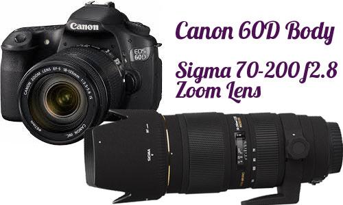Equestrian photography amateur lens canon 40d