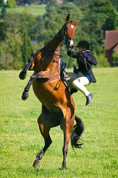 Rider-falling-off-horse-003
