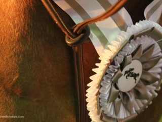horse-show-ribbons2