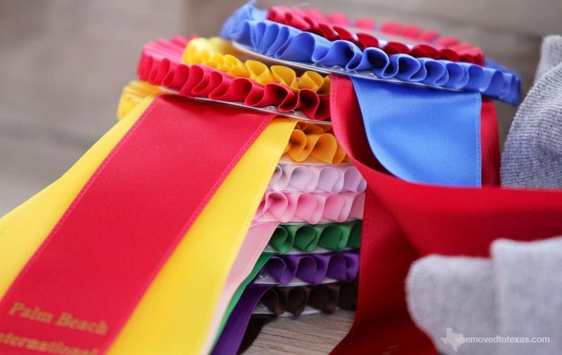 horse-show-ribbons3