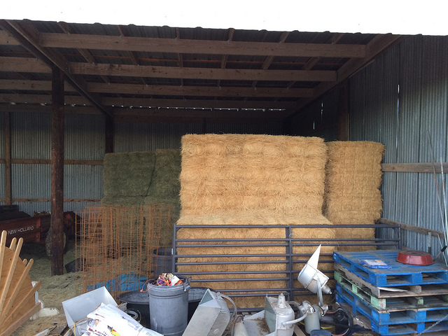 The hay stack
