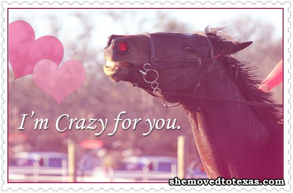 equine-valentines1