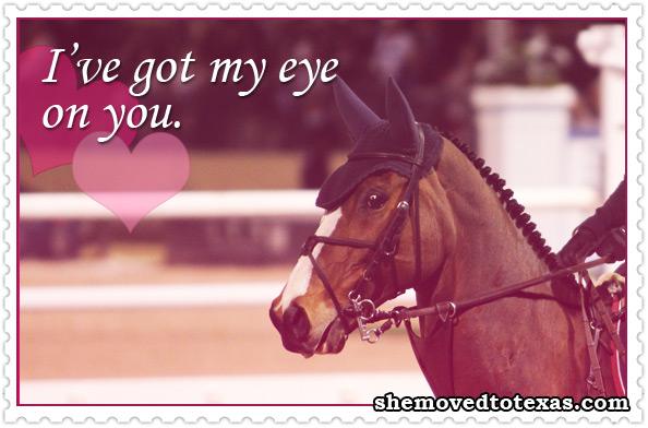 equine-valentines9