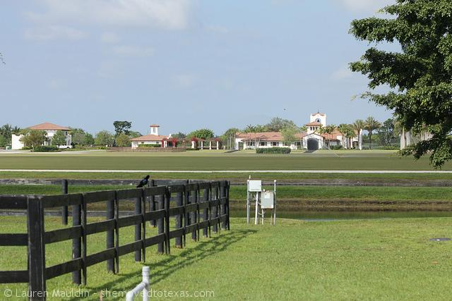wellington-farm5