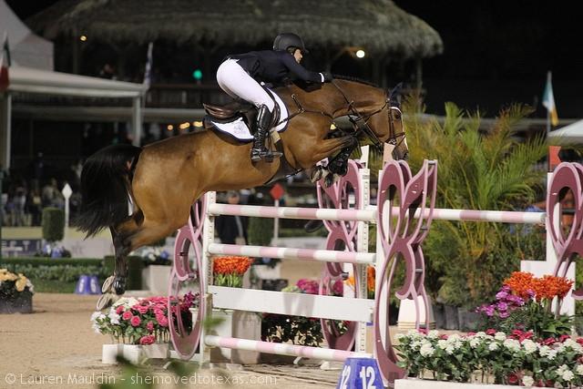 horseware-grand-prix2