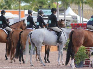 hunter-horse-lineup