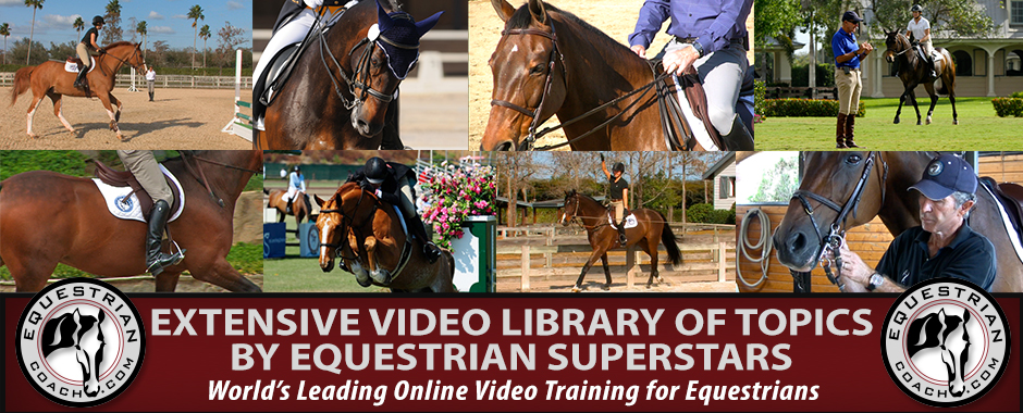 equestrian-coach1