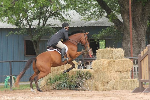 derby-hay-bales