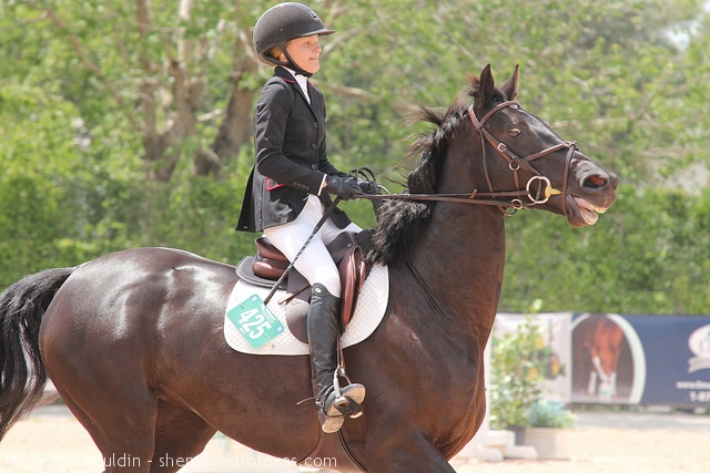wef-junior-jumper