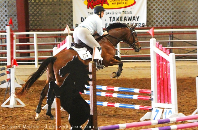 Slightly less scary eq, but notice my irons lol