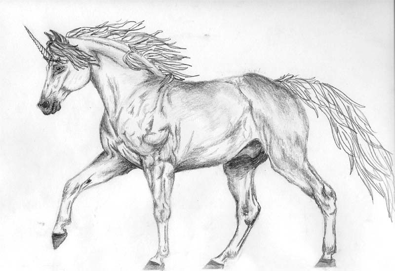 What makes a cantering horse drawing better?  A horn.