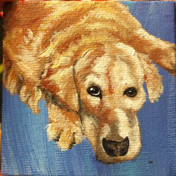 """A 2""""x2"""" dog portrait.  Now this kind of stuff I still enjoy because it's no pressure"""