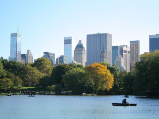The city through Central Park