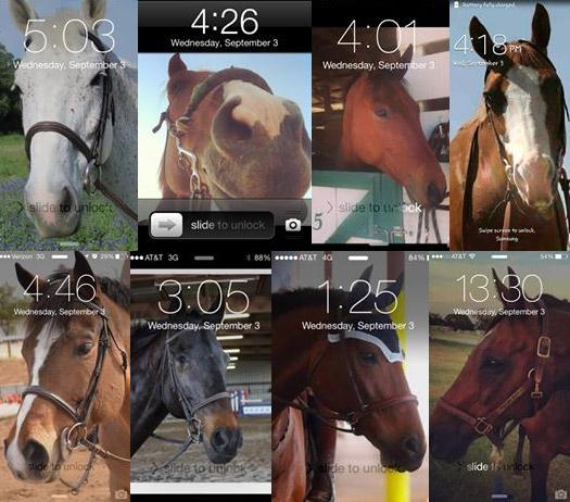 mobile-ponies5
