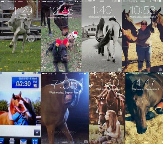 mobile-ponies7