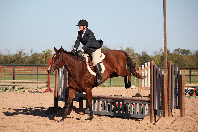 My very out of style old breeches that I adored