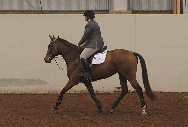 Saddle pad bunching in action