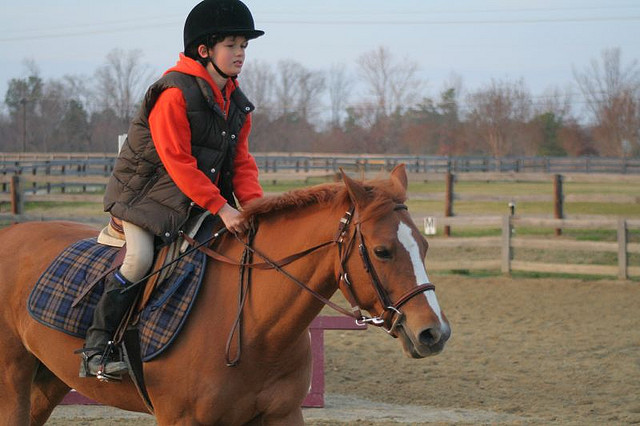 This pony won everything but I personally witnessed her make every kid in the barn cry at least once.