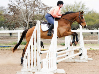 My right rein is tight in every picture.  This may be a new pattern.
