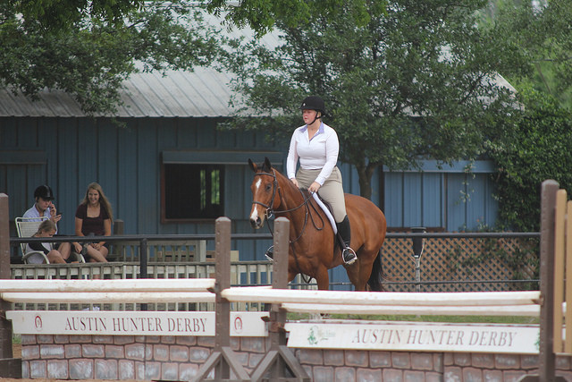 See?  Giant oxers.