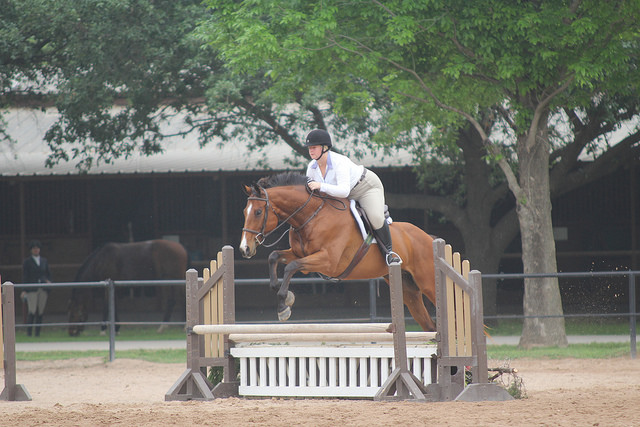 "April 2014 - 2'6"" Hunter Derby"