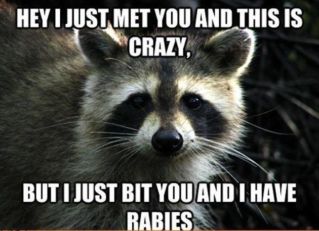 advice-animals-memes-untitled1