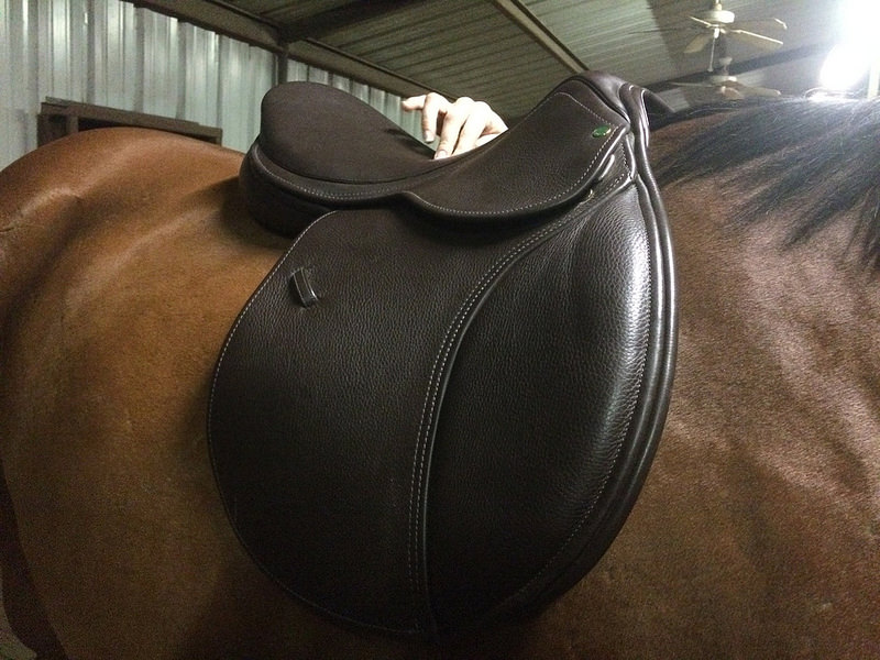 Pointing out balance points of different saddles